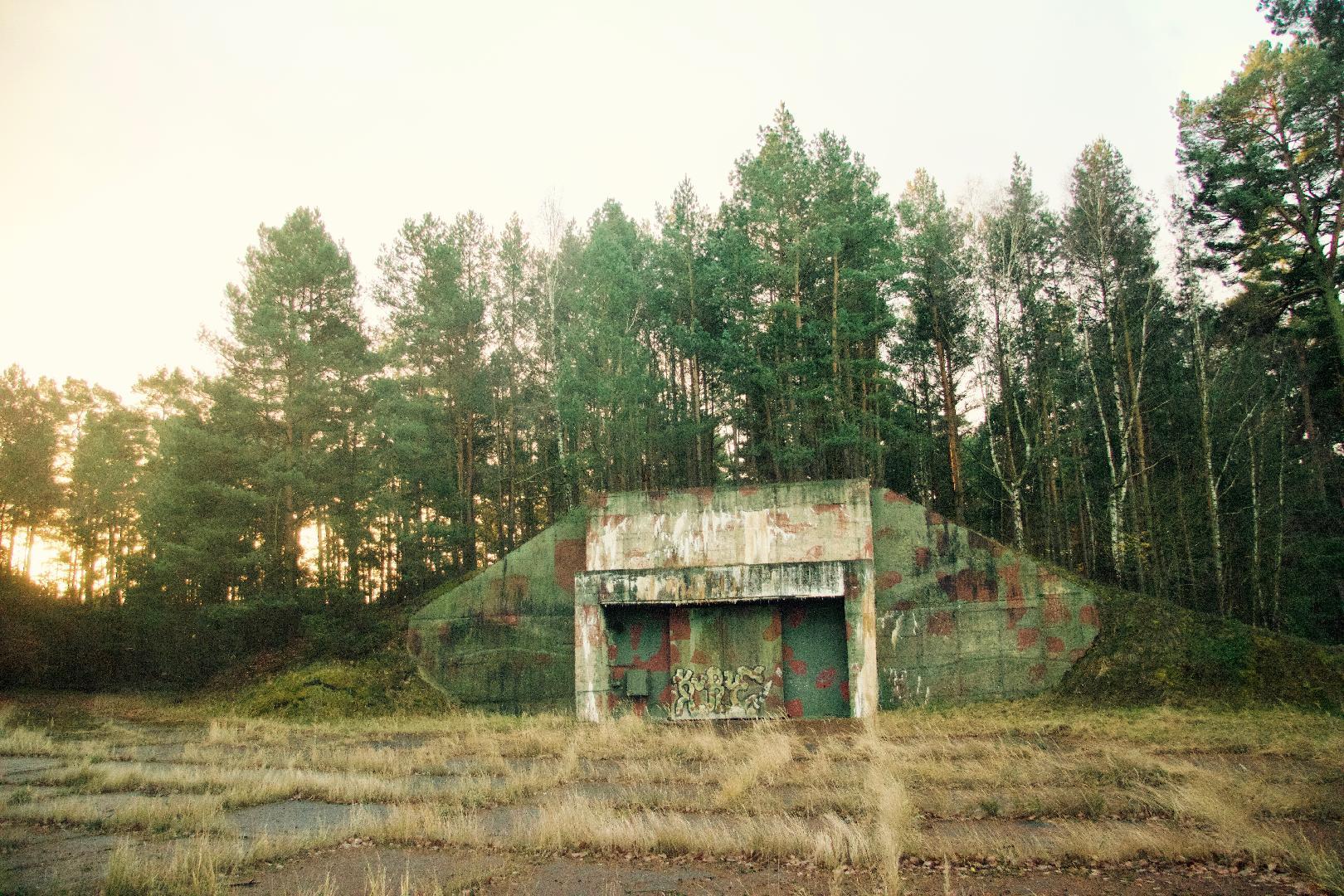 Bild 3 von Wild Bear Eventlocation