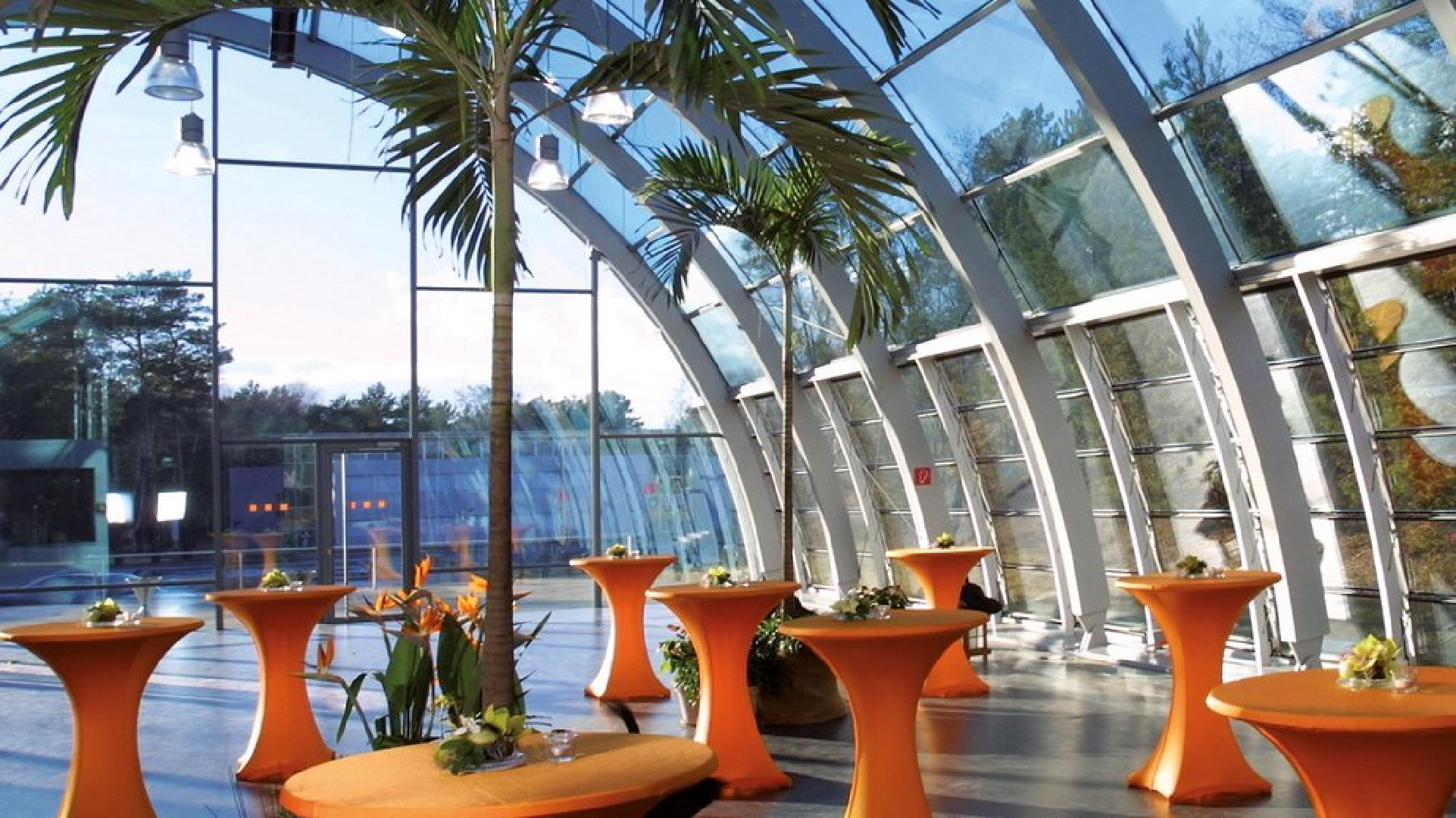 Bild 2 von Tagungen im Tropical Islands - intern / extern , drinnen oder draußen, wie sie mögen !