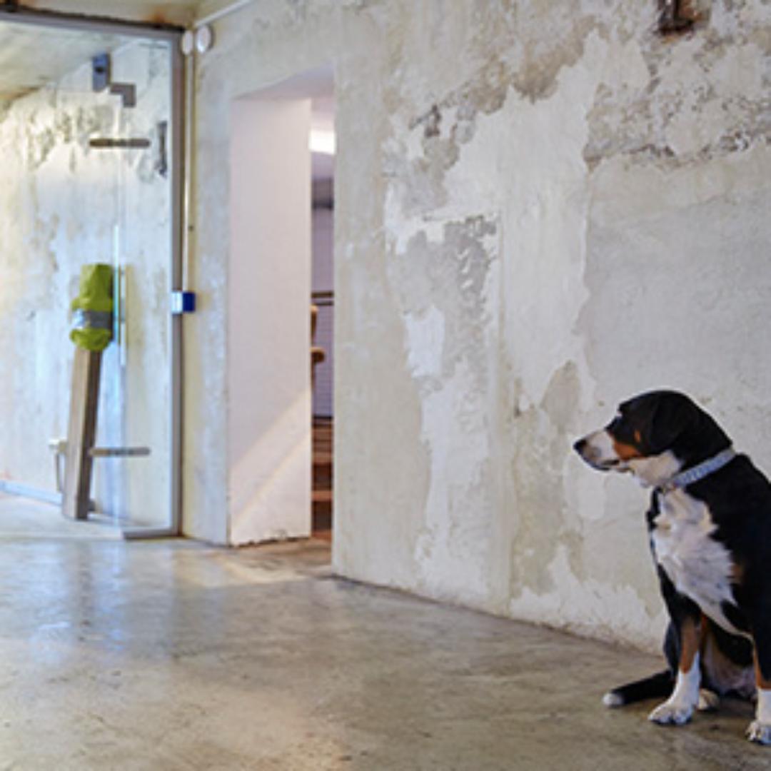 Picture 1 of Räume mit Werkstatt-Charakter